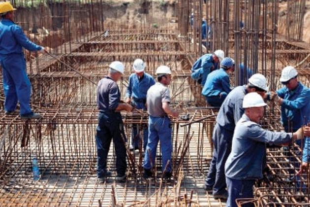 populatii muncitoare